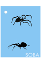 Picture of Crawling Spider Stencil - QEZ82